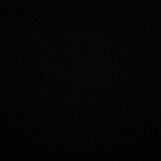 ニッセン(ニッセン)の花柄ブラウス 花柄シャツ フリルブラウス 小花柄(シャツ/ブラウス(半袖/袖なし))