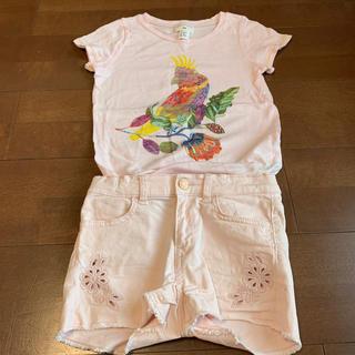 H&M - H&M♡美品♡Tシャツ♡刺繍ショーパン♡セット♡120.130