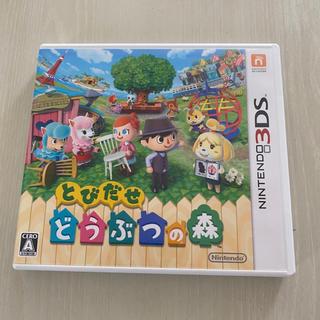 ニンテンドー3DS - 3DS とびだせどうぶつの森 ソフト