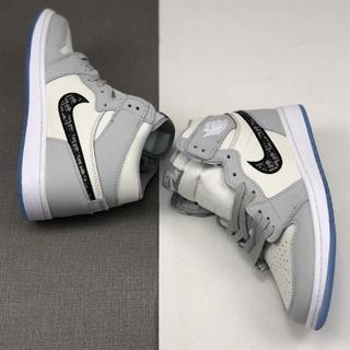 Dior - 23cm Dior x Air Jordan 1 High