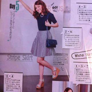 チェスティ(Chesty)のチェスティ♡リバーシブルスカート(ひざ丈スカート)