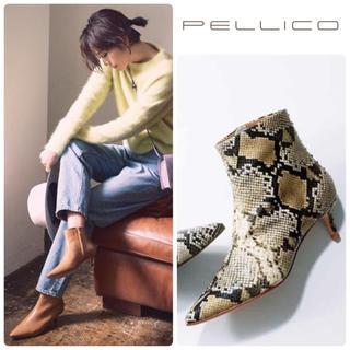 ペリーコ(PELLICO)の82500円 雑誌掲載 ペリーコ ポインテッド  ショートブーツ 新品 24.5(ハイヒール/パンプス)