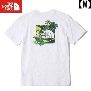 THE NORTH FACE - 《ノースフェイス》 国内未入荷 NEW AQUA TEE Tシャツ【白/M】
