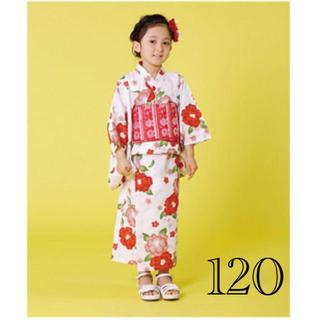 kumikyoku(組曲) - 新品 組曲 浴衣 セパレートタイプ つばきとうめ サイズM 110-120