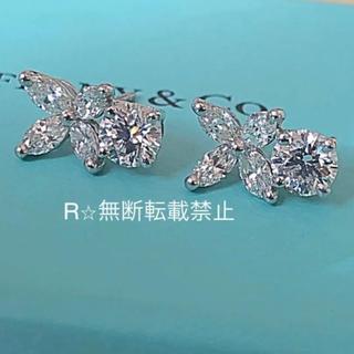 Tiffany & Co. - 特注✨240万円✨Tiffany ビクトリアラウンドダイヤピアス ソレスト