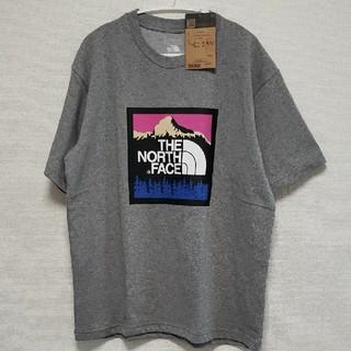 THE NORTH FACE - ノースフェイス Tシャツ グレー 新品未使用 Lサイズ