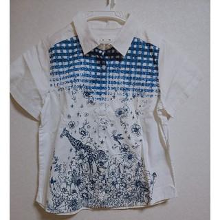 スカラー(ScoLar)のスカラー 半袖シャツ レディーストップス(シャツ/ブラウス(半袖/袖なし))