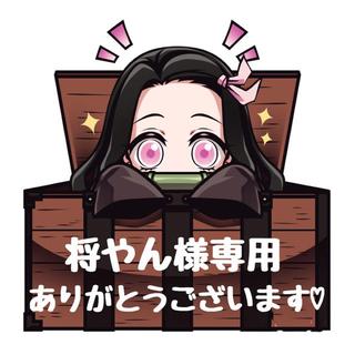 将やん様専用ページ♡