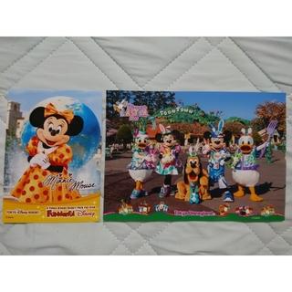 Disney - ファンダフルディズニー スペシャルフォト ミニー うさたま大脱走 フォトファン