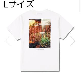 シー(SEA)のSEA ORNAMENT PHOTO (SATIN) T-SHIRT /(Tシャツ/カットソー(半袖/袖なし))