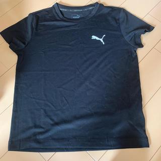 PUMA - プーマ キッズ Tシャツ