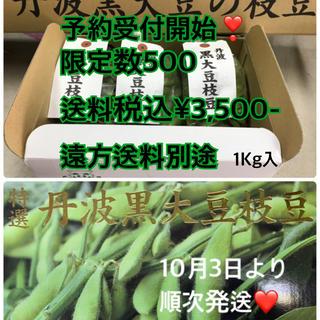 丹波黒枝豆1Kg入り限定数500(野菜)