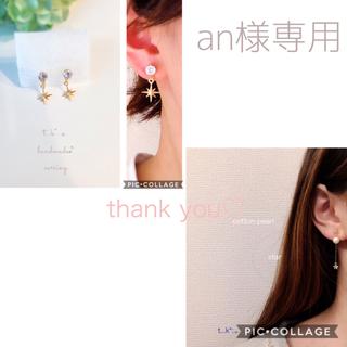an様専用*:.。.  (イヤリング)