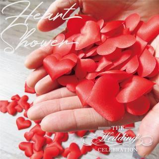 レッド ハートシャワー 200枚 大小セット 結婚式  ホワイトデー イベント(ウェディングドレス)