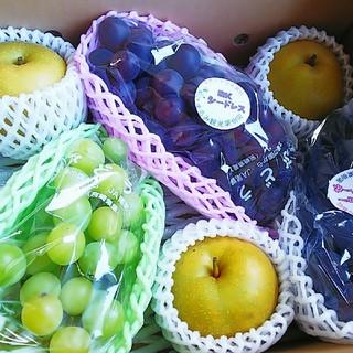 ぶどう&梨のフルーツセット(フルーツ)