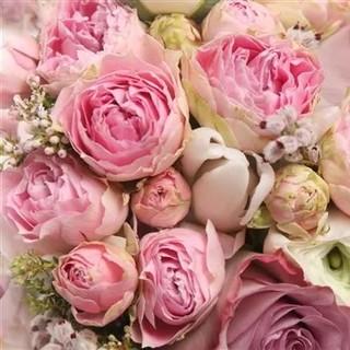 ラルフローレン(Ralph Lauren)のラルフローレン ポロシャツ レディース ピンク ビーズ キラキラ ゴルフ スリム(ポロシャツ)