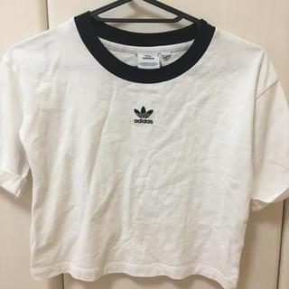 adidas - adidasショート丈Tシャツ