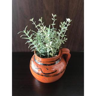 マライカ(MALAIKA)のマライカ 土のポット(花瓶)