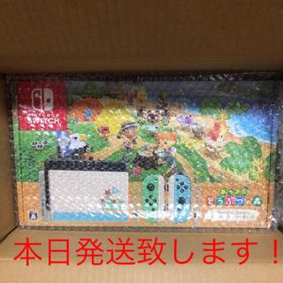 Nintendo Switch - switch  どうぶつの森セット