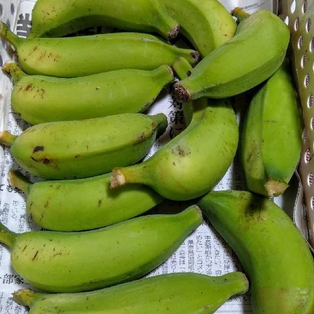 カレン様専用 ブラジル系島バナナと青パパイヤセット 食品/飲料/酒の食品(フルーツ)の商品写真