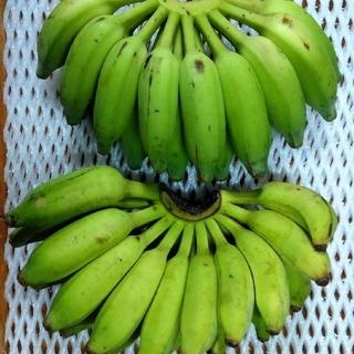 沖縄本島南部産 ブラジル系島バナナ コンパクト便!