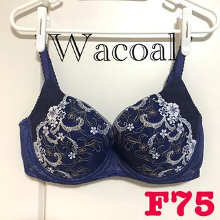 Wacoal - 新品未使用⭐︎F75 きれいのブラ 贅沢スリムタイプ