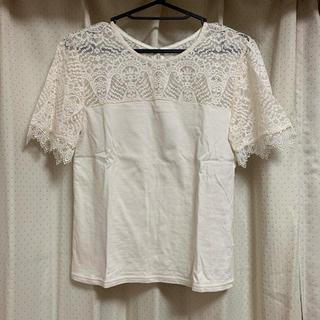 リリーブラウン(Lily Brown)のレースTシャツ(Tシャツ(半袖/袖なし))
