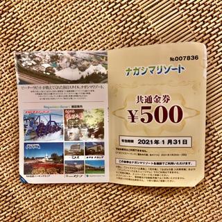 ナガシマスパーランド ナガシマリゾート 金券500円分(遊園地/テーマパーク)