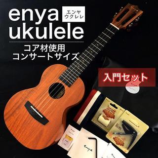 【enya】国内未発売モデル・コア材・コンサートウクレレ【セット付】(その他)
