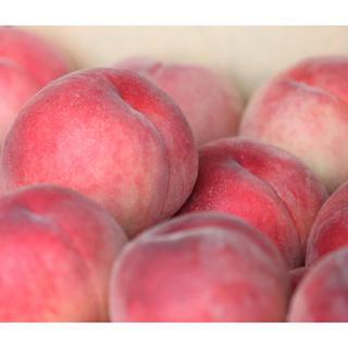 山梨県産もも 2kg(5玉~8玉入り)白鳳か白桃 ご家庭用(アウトレット)