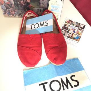トムズ(TOMS)のTOMS レディースシューズ(スニーカー)