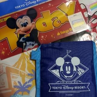 Disney - ディズニーリゾート エコバッグ&Todayケース