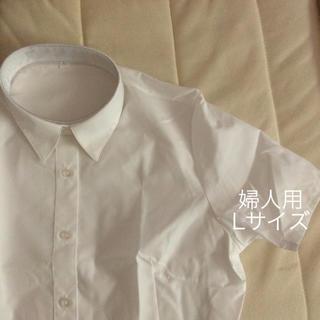 セシール(cecile)の半袖レギュラーカラーシャツ  ホワイト(シャツ/ブラウス(半袖/袖なし))