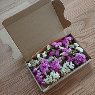ドライフラワー 花材 ハーバリウム(ドライフラワー)