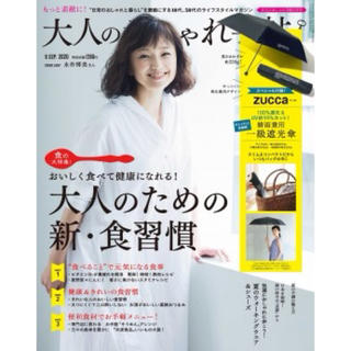 ズッカ(ZUCCa)の大人のおしゃれ手帖付録(傘)