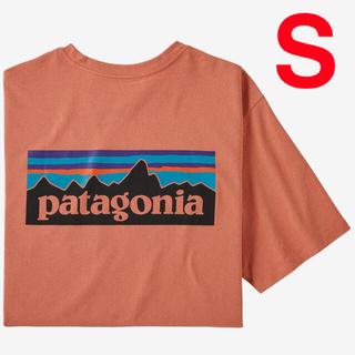 patagonia - 新品 パタゴニア メンズ p6ロゴ ポケット レスポンシビリティ Tシャツ