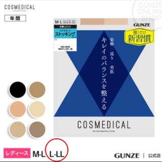 GUNZE - GUNZEコスメディカル コアサポートストッキング L〜LL