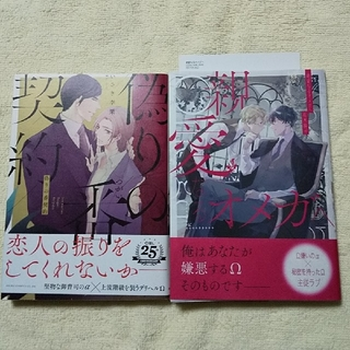 BLコミック オメガバース2冊セット(少女漫画)