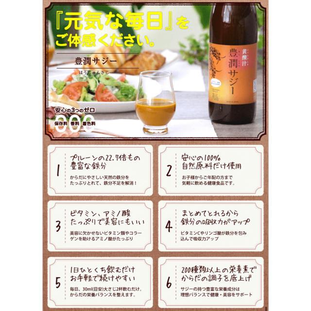 【健康面が気になる方】フィネス 豊潤サジー1000ml 黄酸汁【新品、未開封】  食品/飲料/酒の健康食品(その他)の商品写真