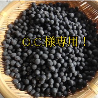 丹波黒枝豆&ネギの種 無農薬 O.C.様専用!(野菜)