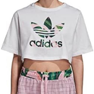 adidas - アディダス オリジナルス ビッグリーフ クロップ Tシャツ