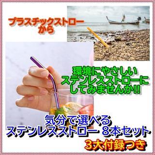 環境にやさしい ステンレス ストロー 8本セット ♪付録つき♪(カトラリー/箸)