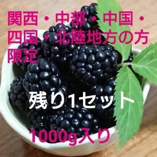 地域別 送料込み  冷凍 ブラックベリー  1000g  ①
