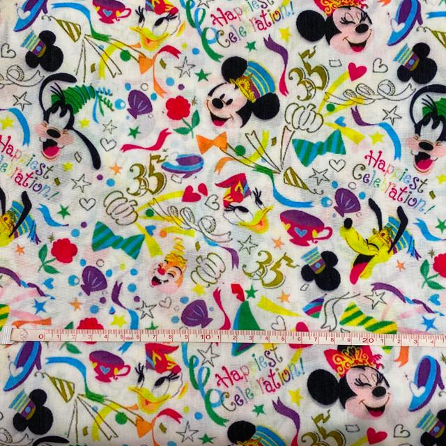 Disney(ディズニー)のディズニー ディズニーランド 35周年 ハピエスト チケット柄 生地 エンタメ/ホビーのおもちゃ/ぬいぐるみ(キャラクターグッズ)の商品写真