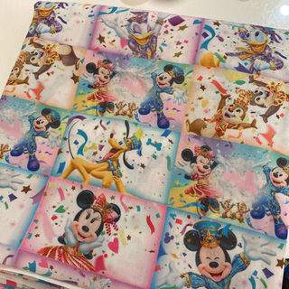 Disney - ディズニー ディズニーランド 35周年 ハピエスト チケット柄 生地