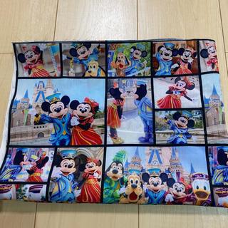 Disney - ディズニー ディズニーランド 35周年 実写 柄 生地