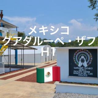 メキシコ フィンカ グアダルーペ・ザフH1 100g