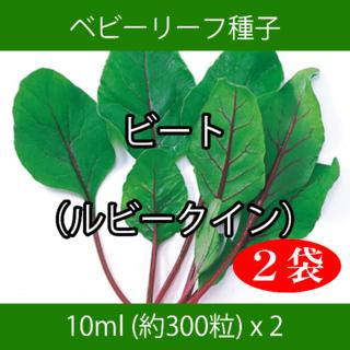 ベビーリーフ種子 B-45 ビート(ルビークイン) 10ml 約300粒 x 2(野菜)