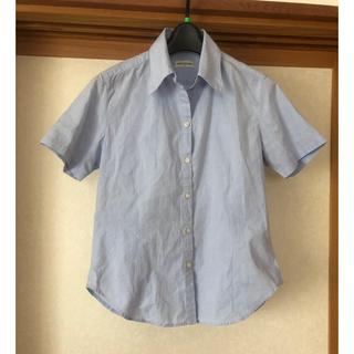 アクアブルー(Aqua blue)のAQUABLUES ブラウス 半袖 水色(シャツ/ブラウス(半袖/袖なし))