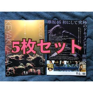 欅坂46(けやき坂46) - 欅坂46 ドキュメンタリー チラシ
